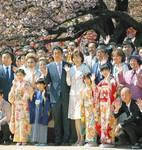 2002 桜東京PK2019051402100054_size0.jpg